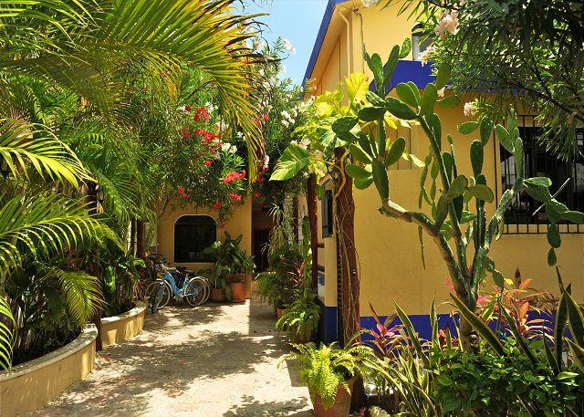 La Buena Vida private gated courtyard. - Modern, Beautiful, Airy, Balcony, Quiet, 1 Bdrm Apt, Pool & Hot tub. - Puerto Morelos - rentals