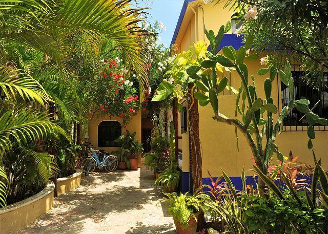 Court yard & entrance. - SHORT WALK TO PARADISE & YOU'VE ARRIVED! - Puerto Morelos - rentals