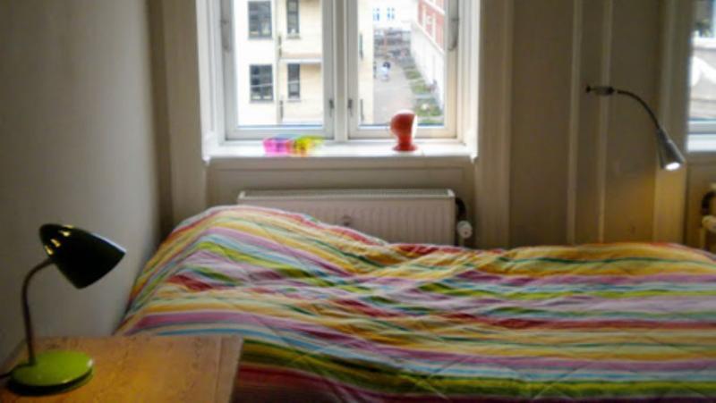 Eskildsgade Apartment - Nice Copenhagen apartment near Central Station - Copenhagen - rentals