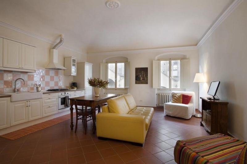 The living room - Charming 2-bedroom apt -Il Prato-Florence's centre - Florence - rentals