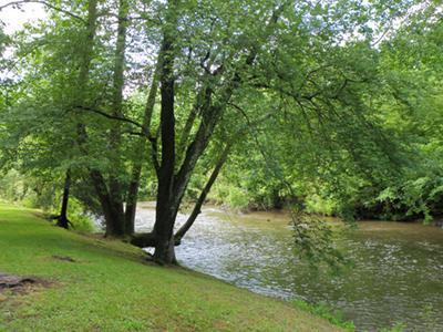 River just outside your door! - Sugar Shack - River Rafting and Tubing Outside You - Franklin - rentals