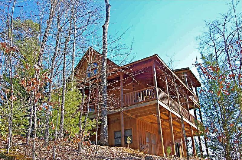 SUNDANCE SPIRIT - Image 1 - Blue Ridge - rentals