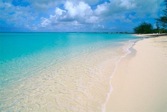 Cayman Reef Beach - LUXURY Beachfront 7MB Condo, Perfect Location! - Seven Mile Beach - rentals