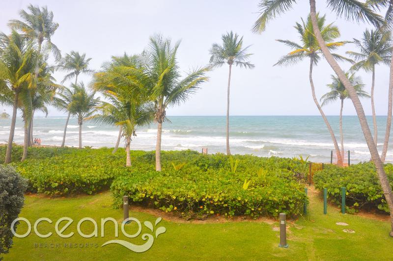 Beach Village 106 - Image 1 - Humacao - rentals