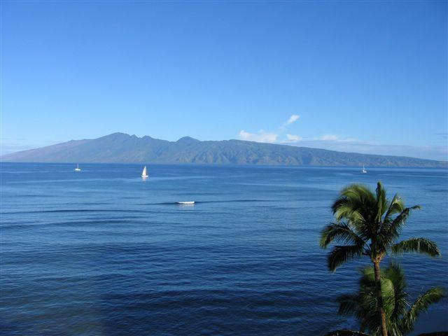 Part of View from Condo - Beach front 1 bedroom  condo with Awesome views! - Lahaina - rentals