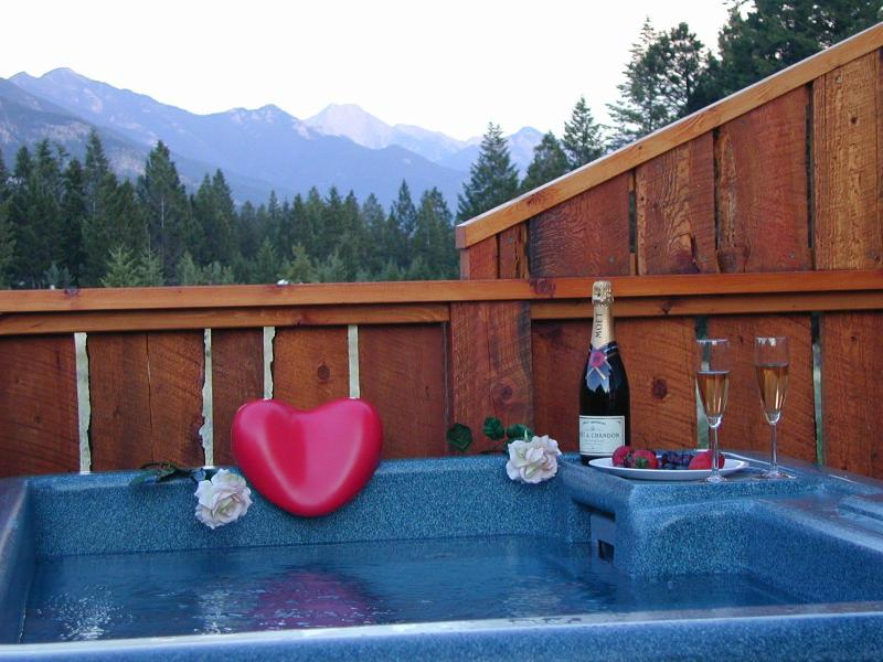 Cabins in BC Rockies and Pet Friendly private Hot tubs - Image 1 - Invermere - rentals