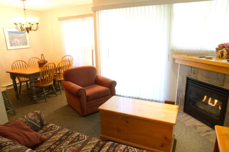 Living room with gas fireplace, flat screen TV and lovely, quiet patio - Sunpath 46 1 bdrm, pet-friendly condo in Whistler - Whistler - rentals