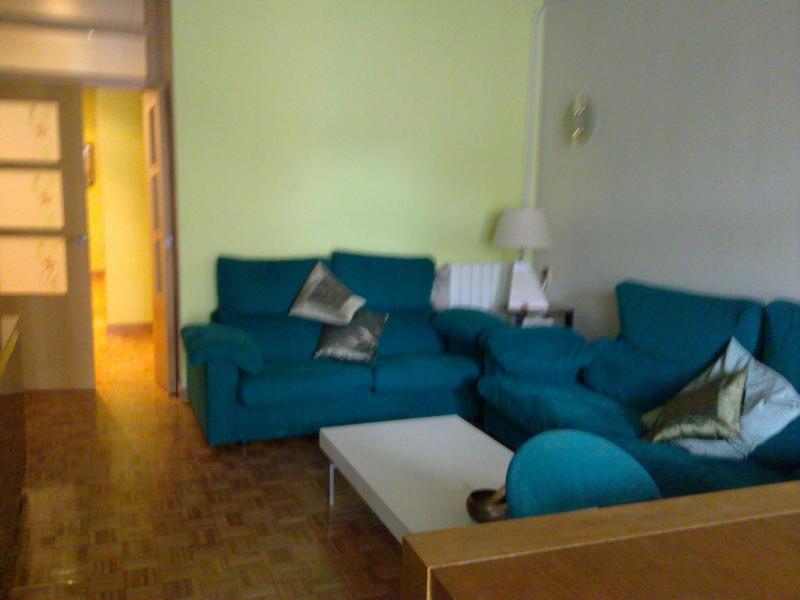 Living room - Sagrada Familia Homey Appartment - Barcelona - rentals