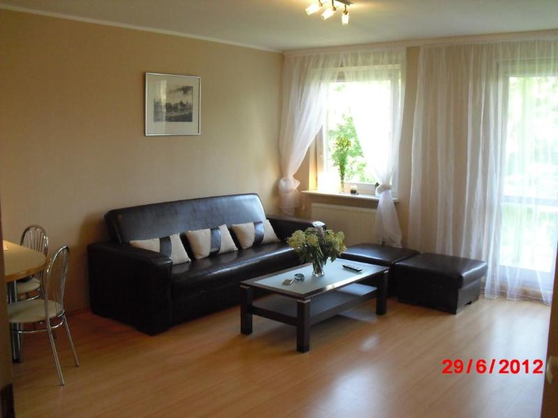 "Living room with expandable sofa for 2 - Apartment ""5"" - Gdansk - rentals"