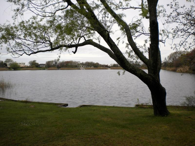 Lakefront - Secluded Lakefront Cottage Near Beaches & Wineries - Southold - rentals
