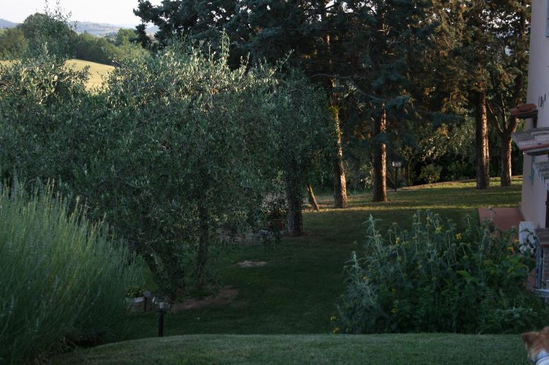 Garden - Podere Gattabigia  Casa Vacanze - Malmantile - rentals