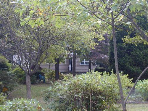 View from Lake - Lake House in Natural Setting Near L.I. Wineries - Southold - rentals