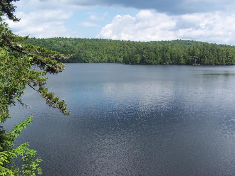 Kiwassa Lake - NEW RENTAL-Adirondack Carriage House Style Rental - Saranac Lake - rentals