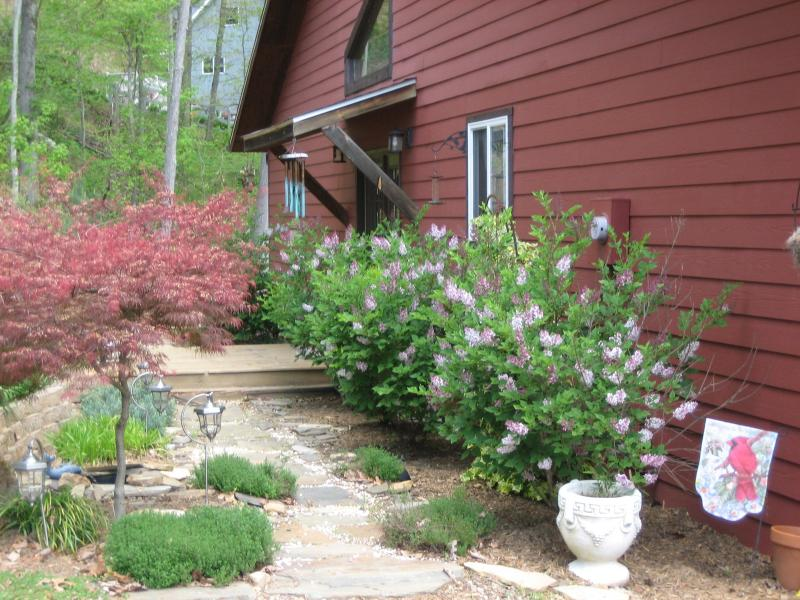 Front of House - Rustic Mountain Getaway with Hot Tub and free Wifi - Waynesville - rentals
