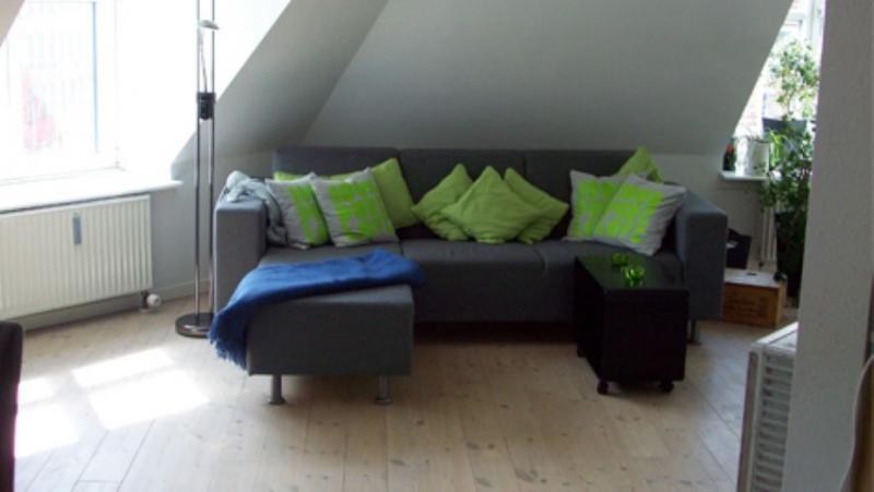 Viktoriagade Apartment - Penthouse Copenhagen apartment at Vesterbro - Copenhagen - rentals