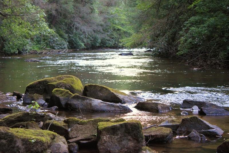 Upstream from the waters edge - Luxurious Fightingtown Creek Cabin, 2 King Suites - Blue Ridge - rentals