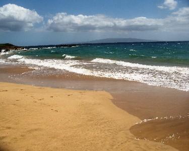 Only steps to Kamaole II Beach from your condo door - August / September Sale !!!  $79. + tax  Ocean Vw - Kihei - rentals