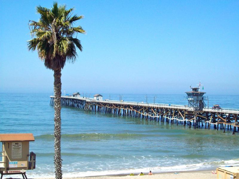 San Clemente Pier and Beach Down the Street - Beach Canyon Tropical 1 Bedroom Getaway! - San Clemente - rentals