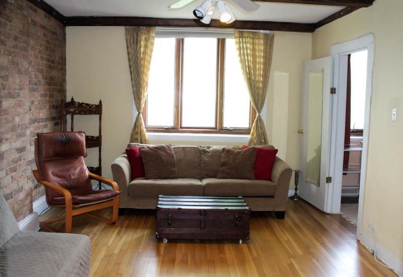 Living Room - Trifecta!  2 Bedroom Best Location in Lincoln Park - Chicago - rentals