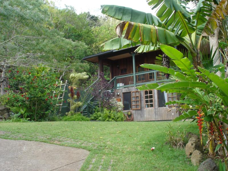 The Pipeline Lodge at Waihuena Farm - Green Lodge on Organic Farm across from Pipeline - Haleiwa - rentals