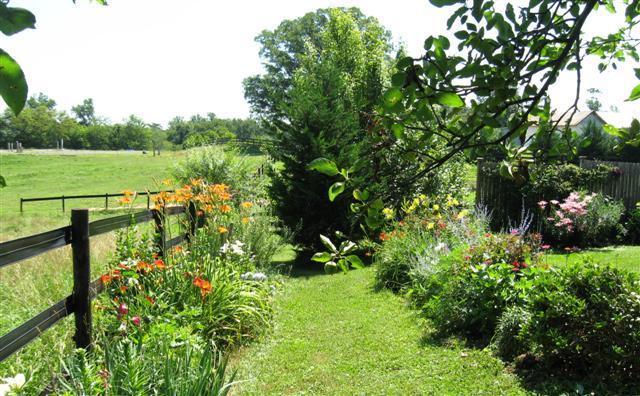 loads of flowers and views - Madison VA Farmhouse on Civil War Battlefield - Rochelle - rentals