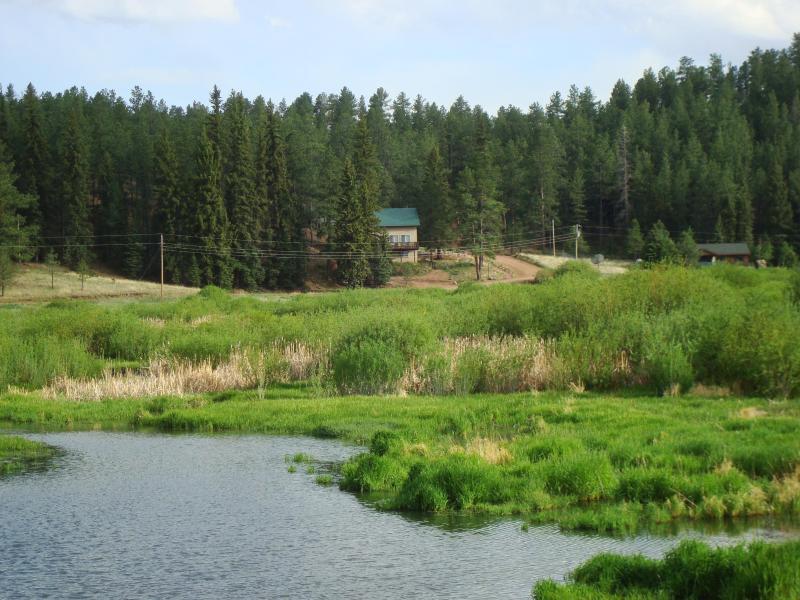 PIKES PEAK RETREAT: Panoramic Mtn Views/Pike Natl - Image 1 - Colorado Springs - rentals