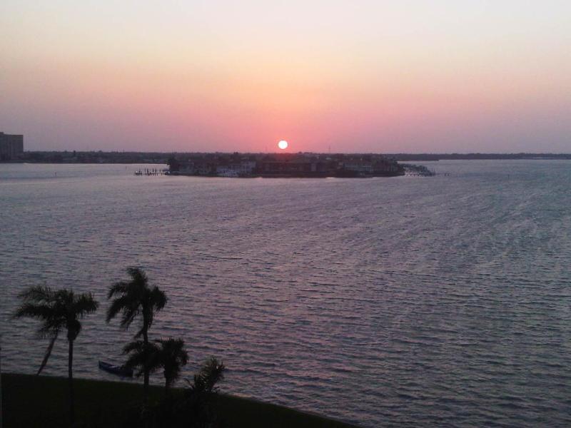 waterviews,privacy,paradise, sunrise! - Isla Del Sol / St. Petersburg / OCEANFRONT/LUXURY - Saint Petersburg - rentals