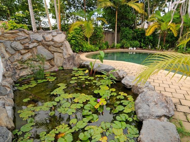 Jewel Of Port - Image 1 - Port Douglas - rentals
