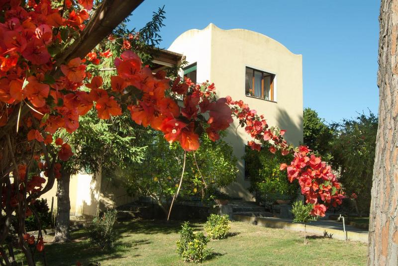 Main entrance - Villa Batiuska, pool, small and large groups - Capri - rentals