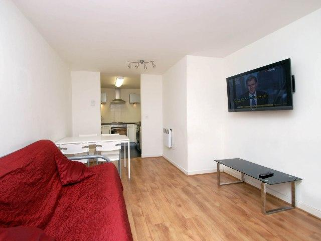 LOUNGE / DINER - Sony High Definition PLASMA TV - 2 Bedroom Stratford Olympic Apartment with Terrace - London - rentals