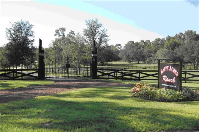 50 miles of trails outside front gate - Working Horse Ranch Accommodations for 4 adults - Dunnellon - rentals