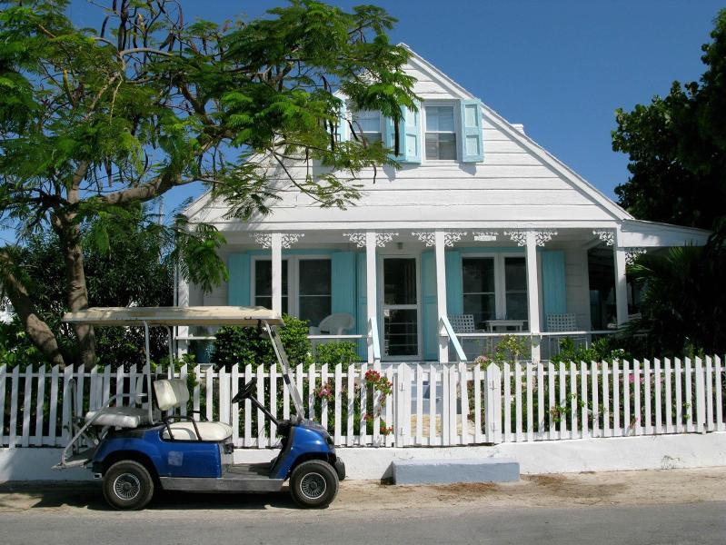 Grapevine - Image 1 - Harbour Island - rentals