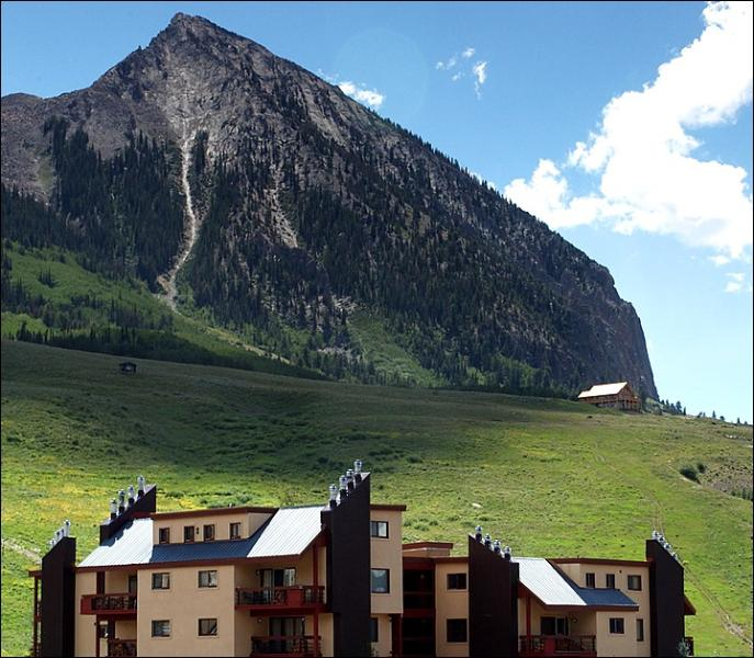 Wood Creek Condominiums - Comfortable Studio Unit - Great Location and Price (1130) - Crested Butte - rentals