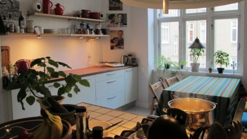 Julius Bloms Gade Apartment - Nice Copenhagen apartment at Noerreport station - Copenhagen - rentals