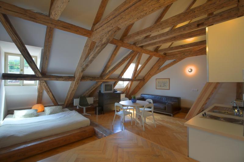Lesser Town Loft Apartment - Lesser Town Loft Apartment - Prague - rentals