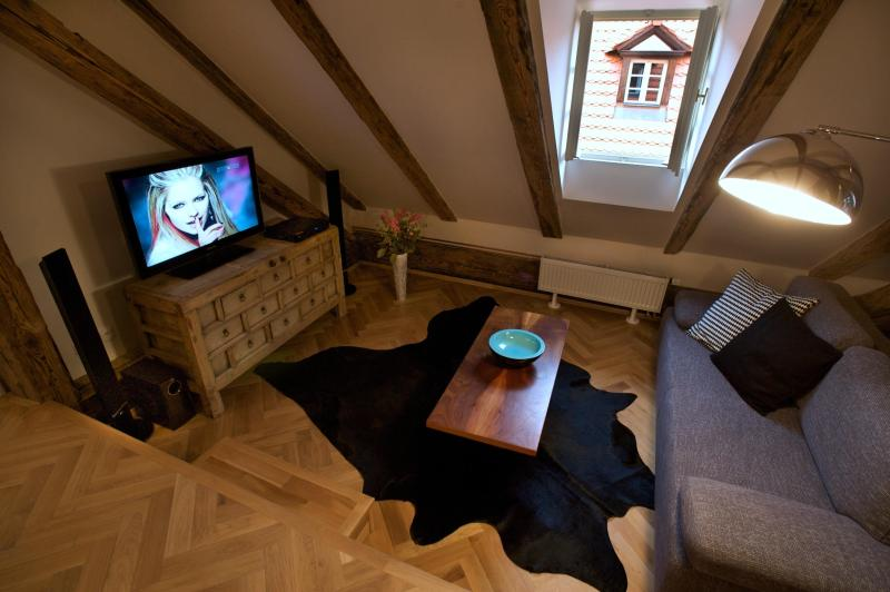 Old World Apartment - Old World One-Bedroom Apartment - Prague - rentals