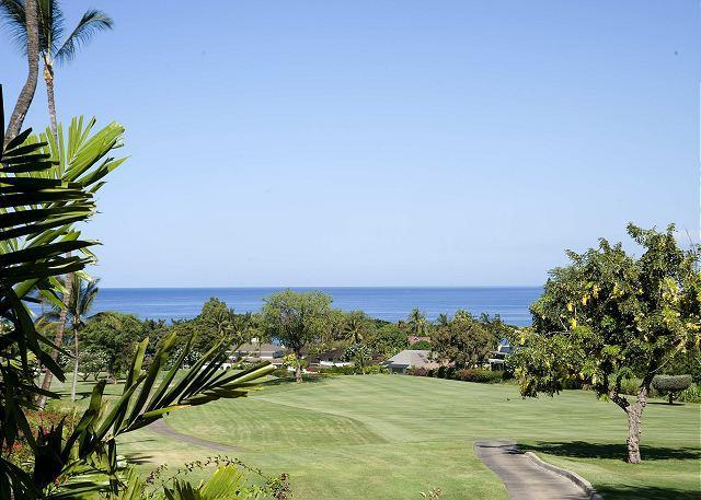 Grand Champions #85 - Image 1 - Maui - rentals