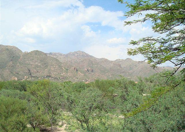 First Floor Spectacular Condo with Breathtaking Mountain Views. - Image 1 - Tucson - rentals