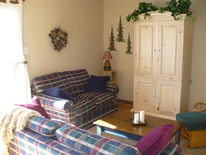 Watch TV, do Karaoke, or just sit and talk - On Top of the World in Summit County - Dillon - rentals