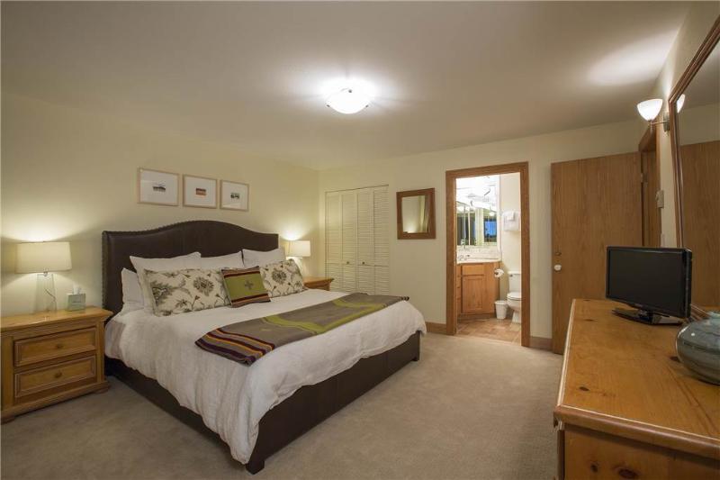 Cimarron Lodge 15 - Image 1 - Telluride - rentals