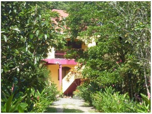 Casa del Cazador - Casa Del Cazador - Bocas del Toro - rentals