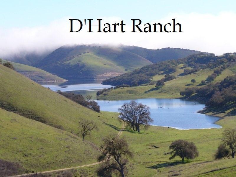 View from D'Hart Ranch - Ranch Estate - 2 Homes Between 2 Lakes - Sleeps 22 - Lake Nacimiento - rentals