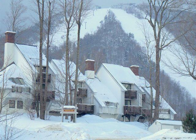 Ski on Ski off to Bear mountain at Killington! - Ski In Ski Out Slopeside Condo full of amenities! - Killington - rentals