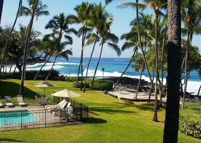 Amazing Oceanfront Kona Isle D21 - Image 1 - Kailua-Kona - rentals