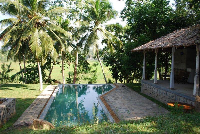 pool - 3 bedroom villa with swimming pool in Hikkaduwa - Hikkaduwa - rentals