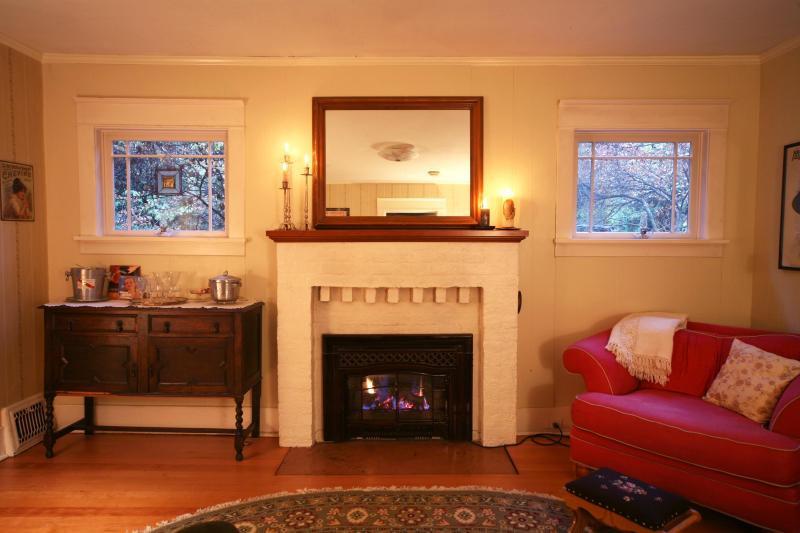 Let's sit by the fire! - Private North Seattle Guest Cottage - Seattle - rentals