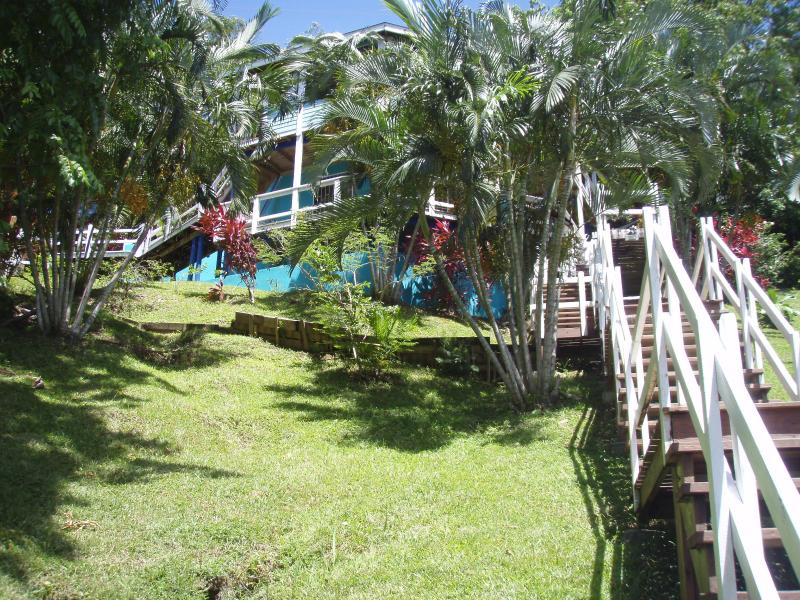 View of house and landscape from marina road - JIVESHACK - 300 ft to dock-free kayak- snorkeling - Roatan - rentals