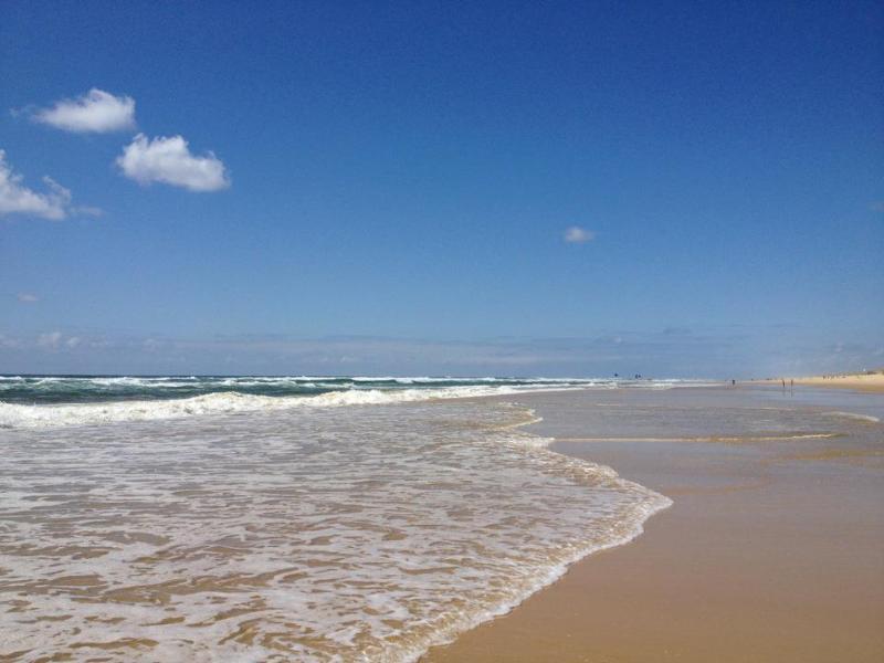 French Landes seaside location-landes-mimizan-plage - Location vacances Landes pas cher 50E/nuit - Mimizan - rentals