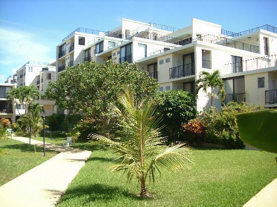 Coral Beach Condo's - Coral Beach Summer Rates Now $105 per night! - Freeport - rentals