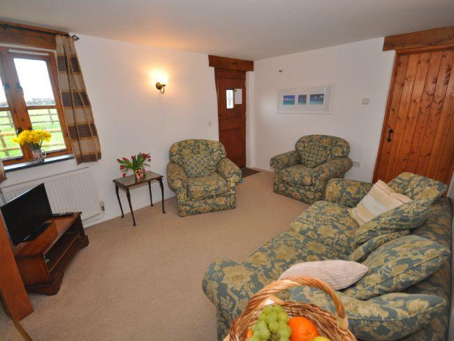View across towards cottage with enclosed patio and garden - HIDUX - Pyworthy - rentals